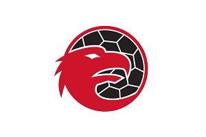 European Eagle Handball Mascot