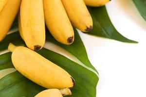 Fresh mini banana fruits on palm lea