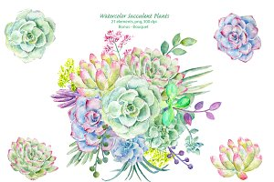 Watercolor Clipart Succulent Plants
