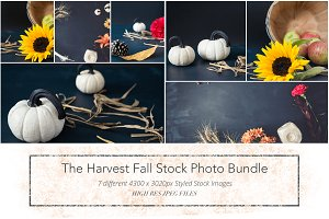 Harvest Fall Stock Photo Bundle