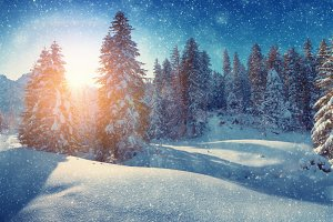 Winter christmas snowfall
