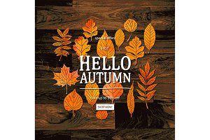 Hello Autumn Sale Banner