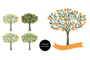 Orange and lemon trees collection