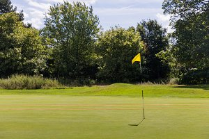 Beautiful golf fields with green gra