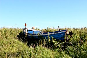 Rusty blue boat and grass