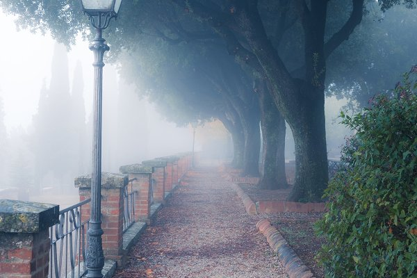 Architecture Stock Photos - Old foggy city park alley