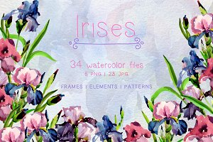 Tender Irises PNG watercolor set