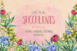 Succulents PNG watercolor set