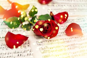 Red rose flower Music notes hearts