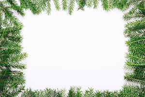 Frame of green christmas tree