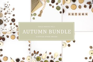 Autumn Styled Stock Bundle