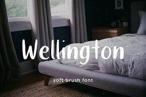 Wellington cute brush font