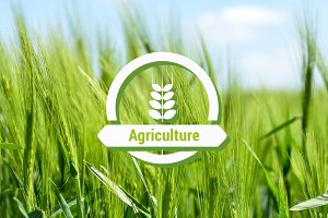 Agriculture Powerpoint Presentation
