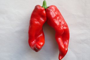 twin peppers vegetables food