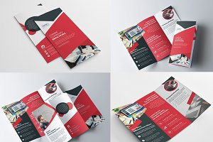 Tri Fold Multipurpose Brochure