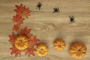 Pumpkin Autumn Thanksgiving Backgrou