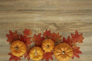 Autumn Harvested pumpkin on wooden