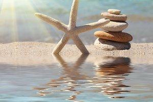 starfish and stones