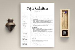 1, 2 & 3 Page Resume + Bonus