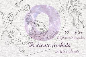 Delicate orchids. Alphabet & Graphic