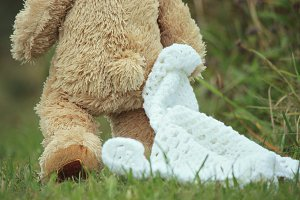 Teddy Bear Walking with His Blanky