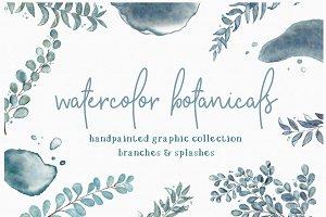 Botanicals + Splashes Clipart Set