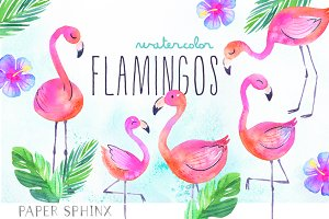 Watercolor Tropical Flamingo Clipart