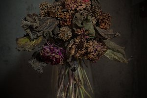 dried zinnias and dahlias