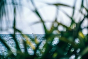 Faraway Island Seen Through Grass