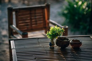 Vase of Green Leaves Placed on Table