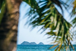 Tropical Island Photography