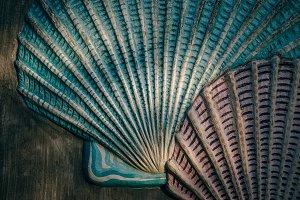 Stunning Seashell Wall Carvings