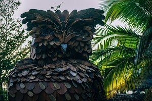 Wooden Owl Inside a Luxury Resort