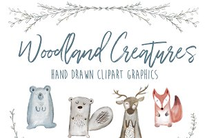 Woodland Creatures Animal Clipart