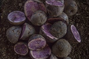 Purple Potatoes on a Dirt Background