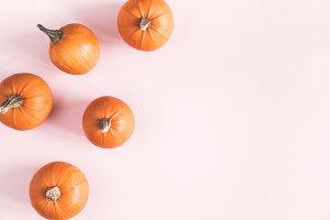 Pumpkins on pink background