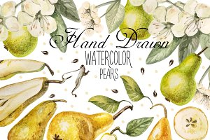 Beautiful watercolor pears