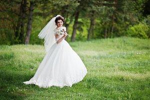Tenderness brunette bride with weddi