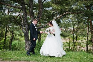 Elegance wedding couple at their day