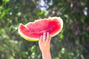 Slice of watermelon in child's hand
