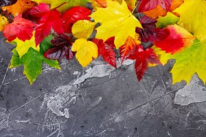 Natural fall leaves