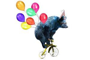 Birthday Party-Bear art illustration