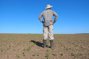 Young disappointed farmer looking at