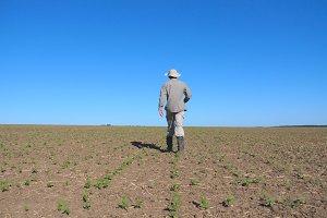 Unrecognizable male farmer walking