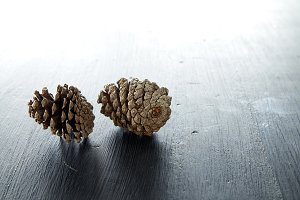 Closeup of two pine cone
