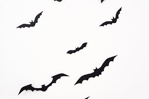 Bat paper decoration halloween