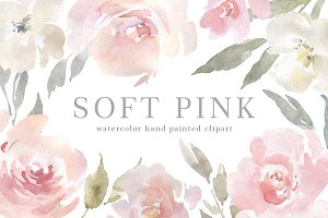 Blush Pink Watercolor Flowers PNG