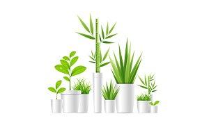 3d Green Houseplant Pot.