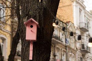 Pink birdhouse.