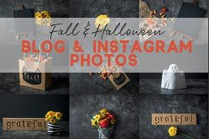 Fall & Halloween Stock Photos (12)